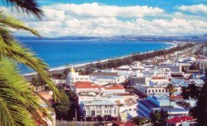 Обзорная экскурсионная программа по Нейпиру