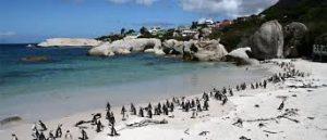 Посещение Пляжа Алланс