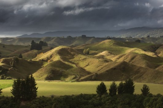 Новая Зеландия 5 дней