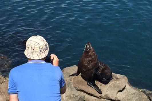 экскурсии с русским гидом в новой зеландии