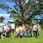 групповой тур новая зеландия